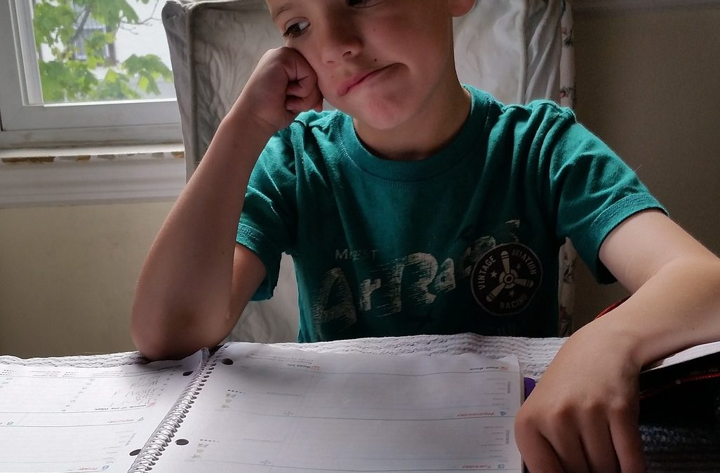 """Neuroeducación: """"El cerebro necesita emoción para aprender"""""""