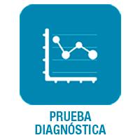 prueba diagn